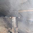 乾燥した煙